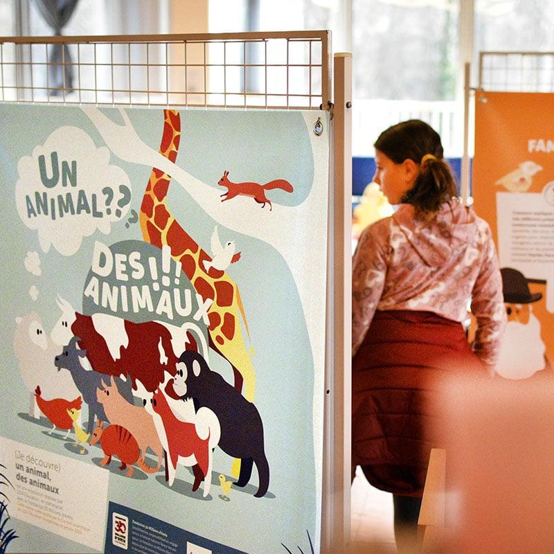 Exposition Un animal, des animaux