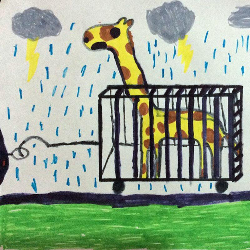 La capture d'ue girafe, dénoncée par Victor