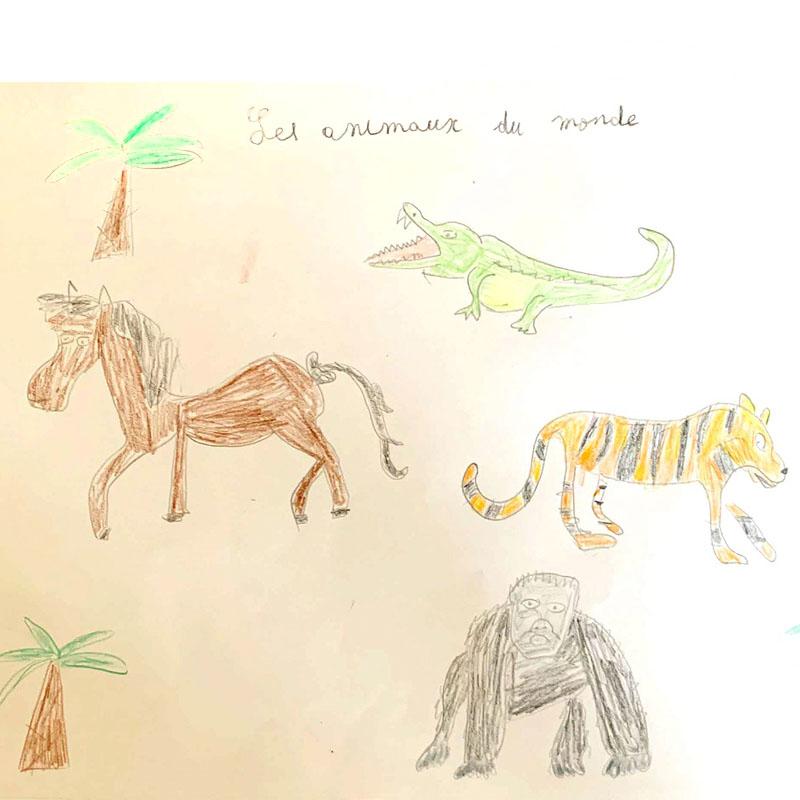 Arthur: 'Les animaux du monde'
