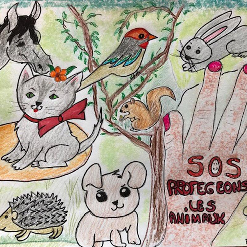 Faustine: 'SOS les animaux sont en détresse'
