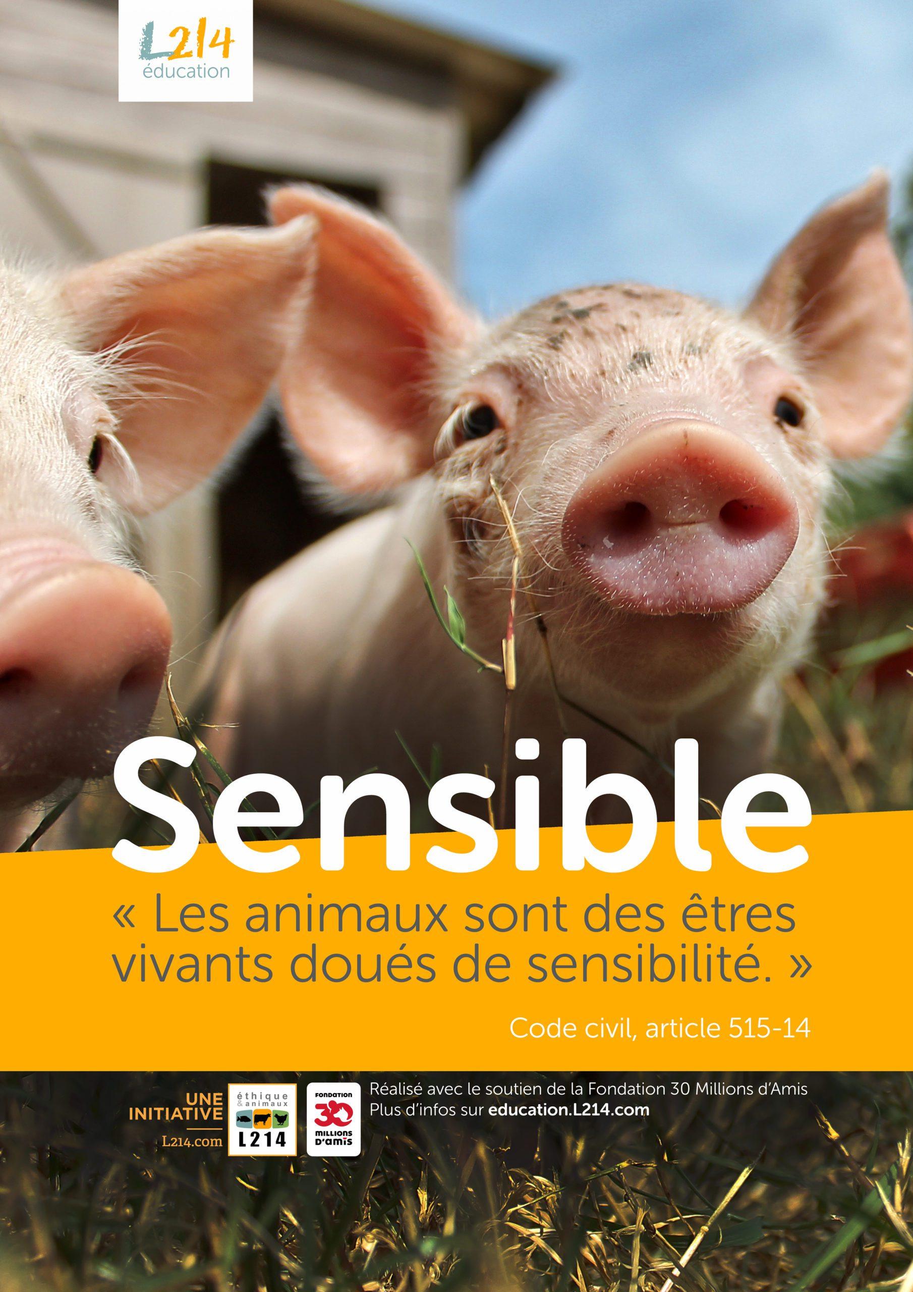 Poster  «Sensible» n°2