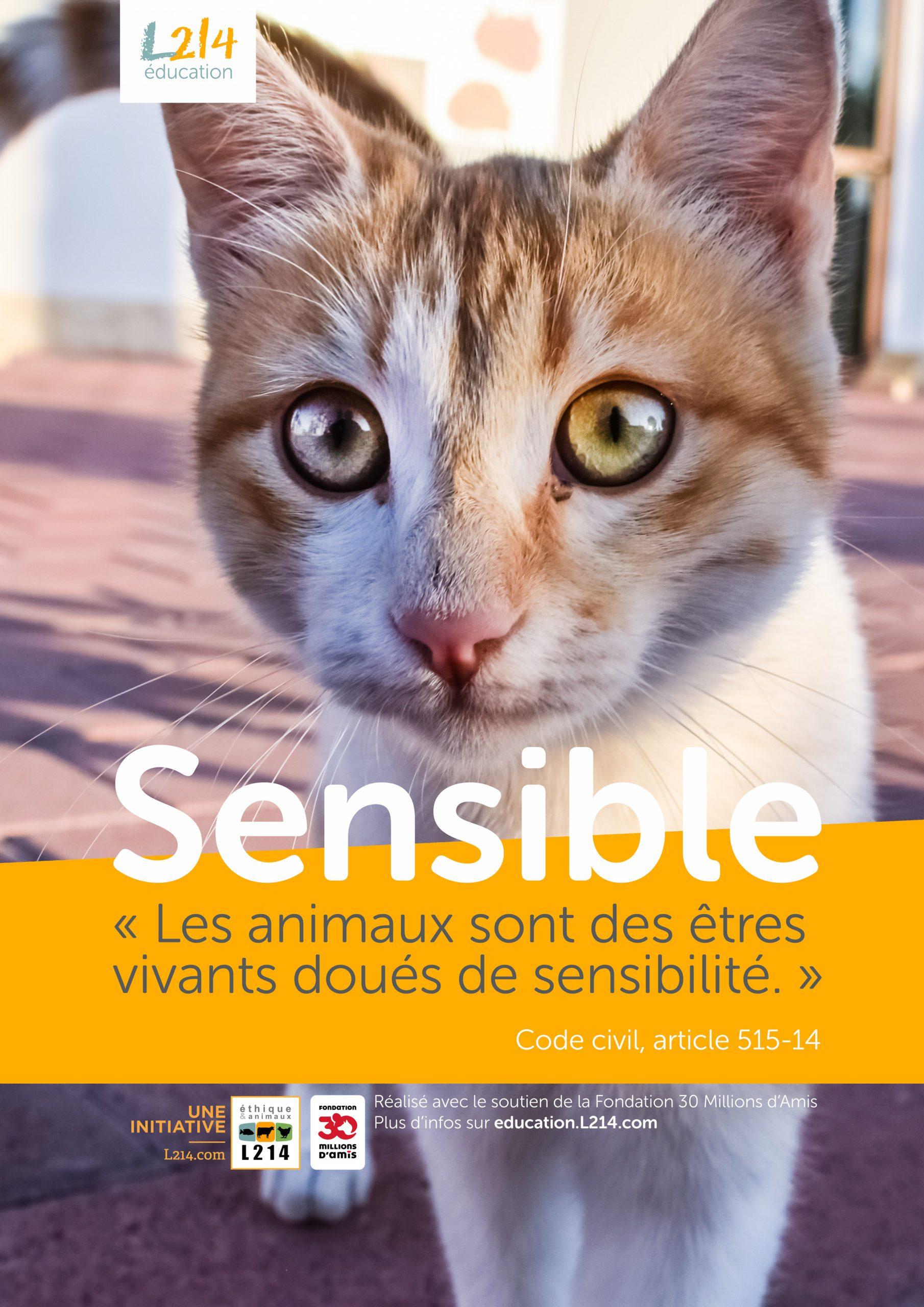 Poster  «Sensible» n°4