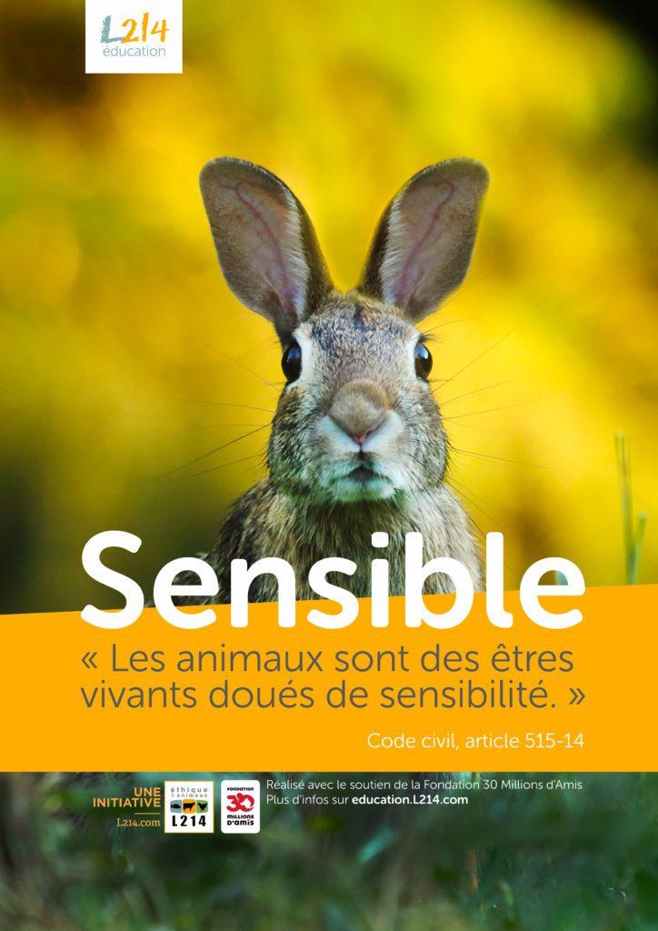 Poster  «Sensible» n°5