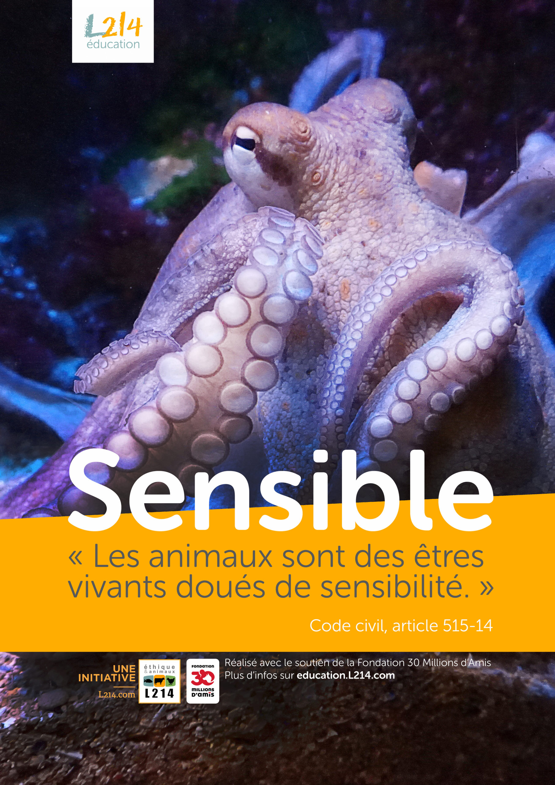 Poster  «Sensible» n°6