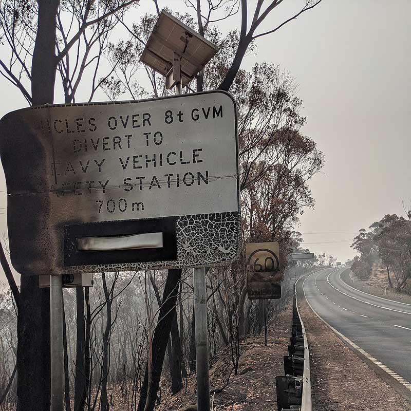 Selon le WWF, ces feux de forêt auraient tué 1,25 milliard d'animaux: un bilan catastrophique.