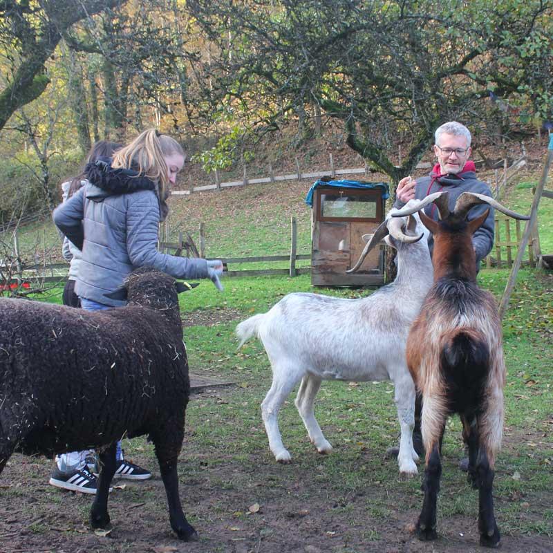 Les élèves rencontrent Ralph le mouton et Crocus le bouc!