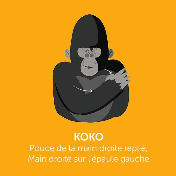 Parle comme Koko: KOKO