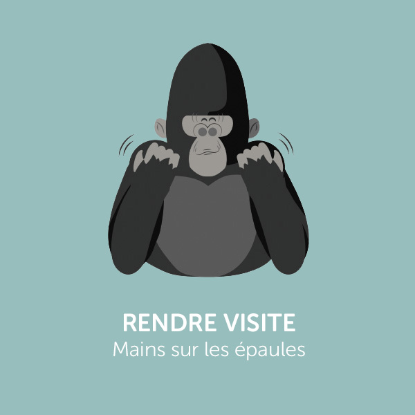 Parle comme Koko: RENDRE VISITE
