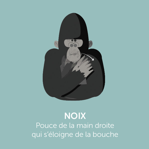Parle comme Koko: NOIX
