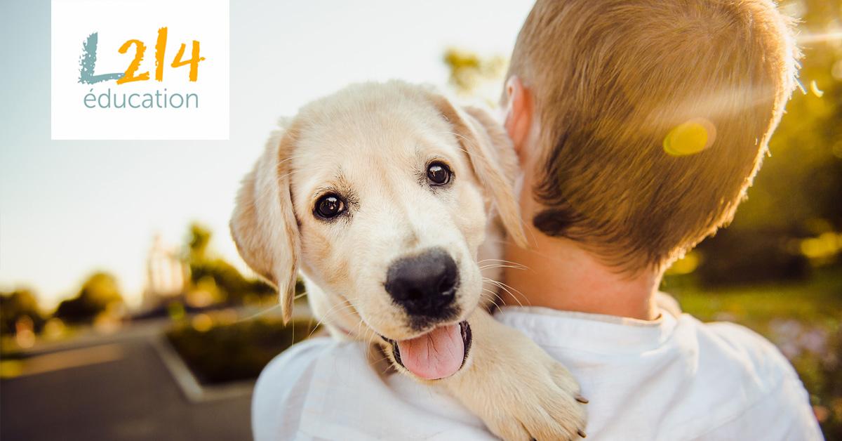 10 bonnes nouvelles pour les animaux en 2018!