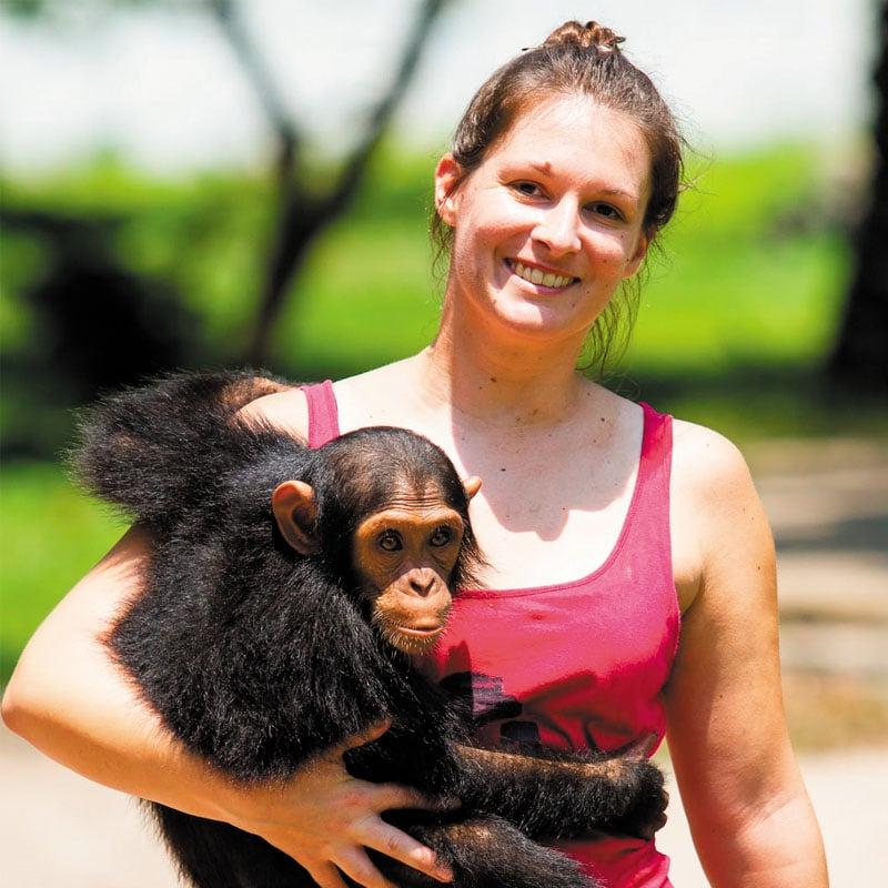 Amandine et Mongo, ancien chimpanzé de zoo.