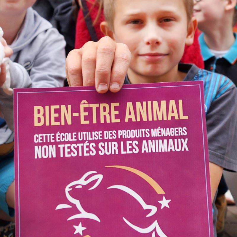 Les élèves de Marilles en action pour les animaux de laboratoire