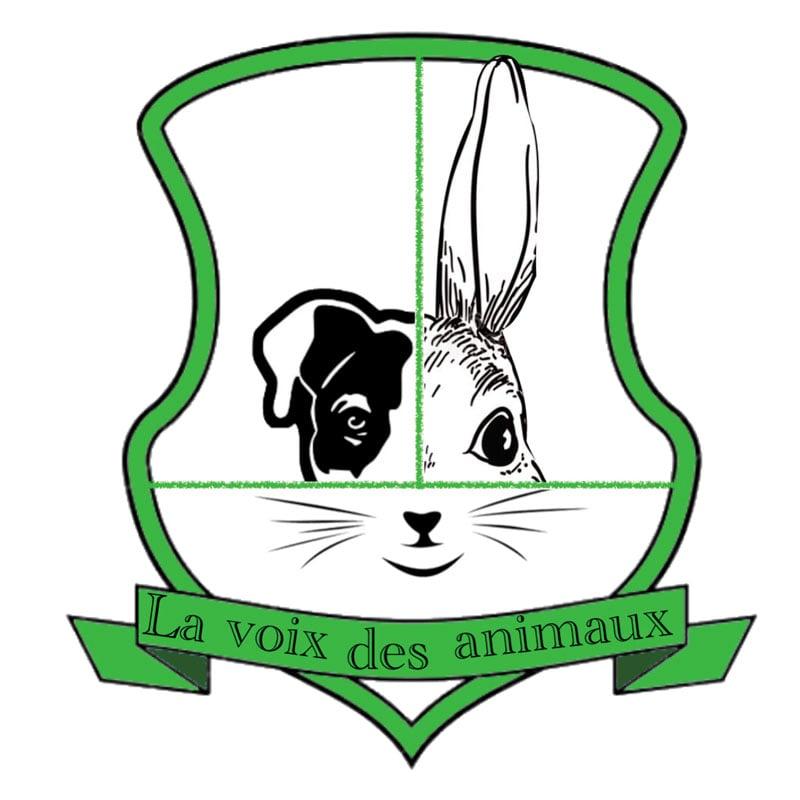 Le logo du club, réalisé par Alba