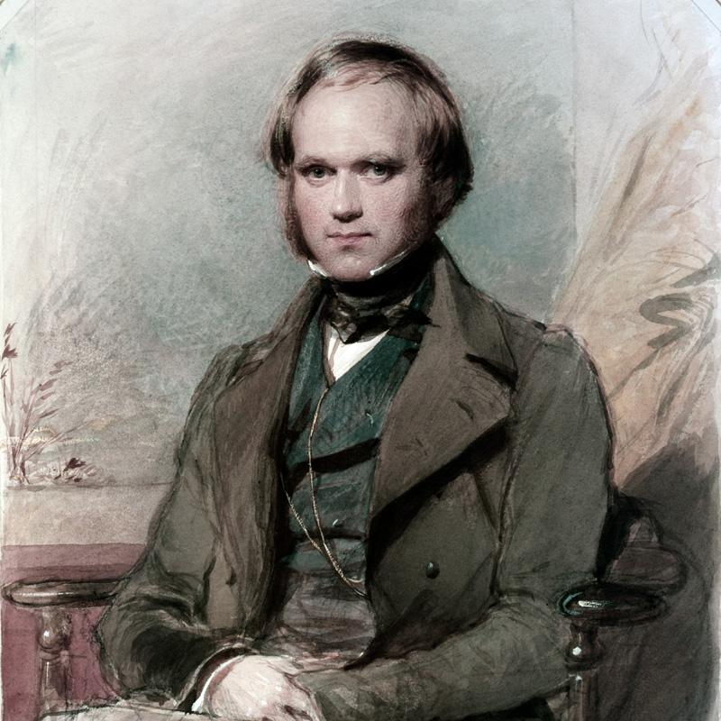 Darwin vers 1830 / Portrait par G. Richmond