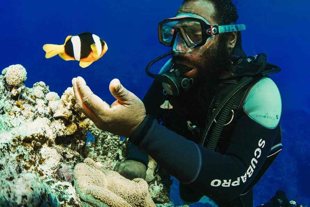 Plongeur et poisson-clown