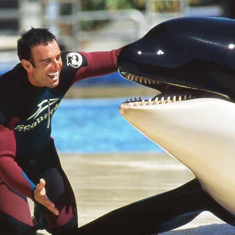 John Hargrove était un dresseur d'orques