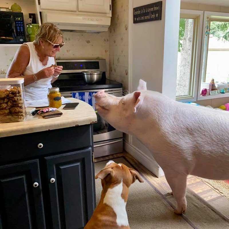 Esther et ses amis en cuisine