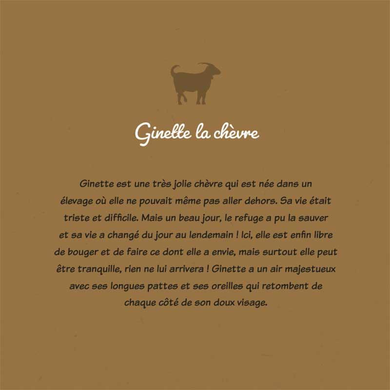 Les animaux sauvés - Carnet de coloriage pour enfants - chèvre