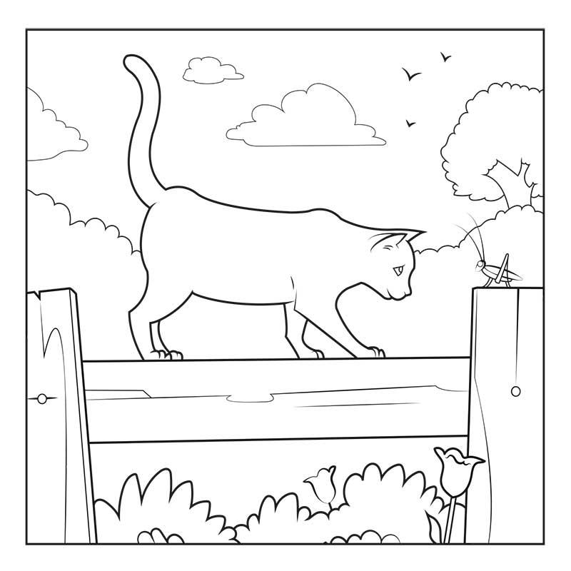 Les animaux sauvés - Carnet de coloriage pour enfants - chat