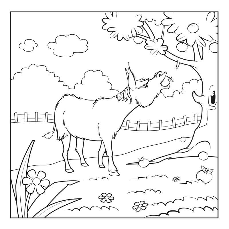 Les animaux sauvés - Carnet de coloriage pour enfants - âne