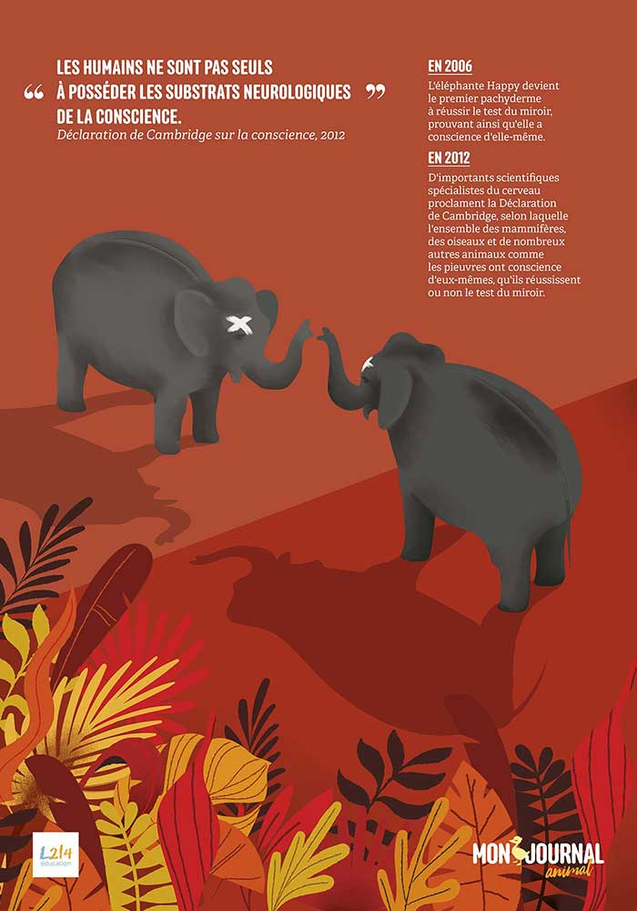 Poster Mon-journal-animal #2 / Conscience animale