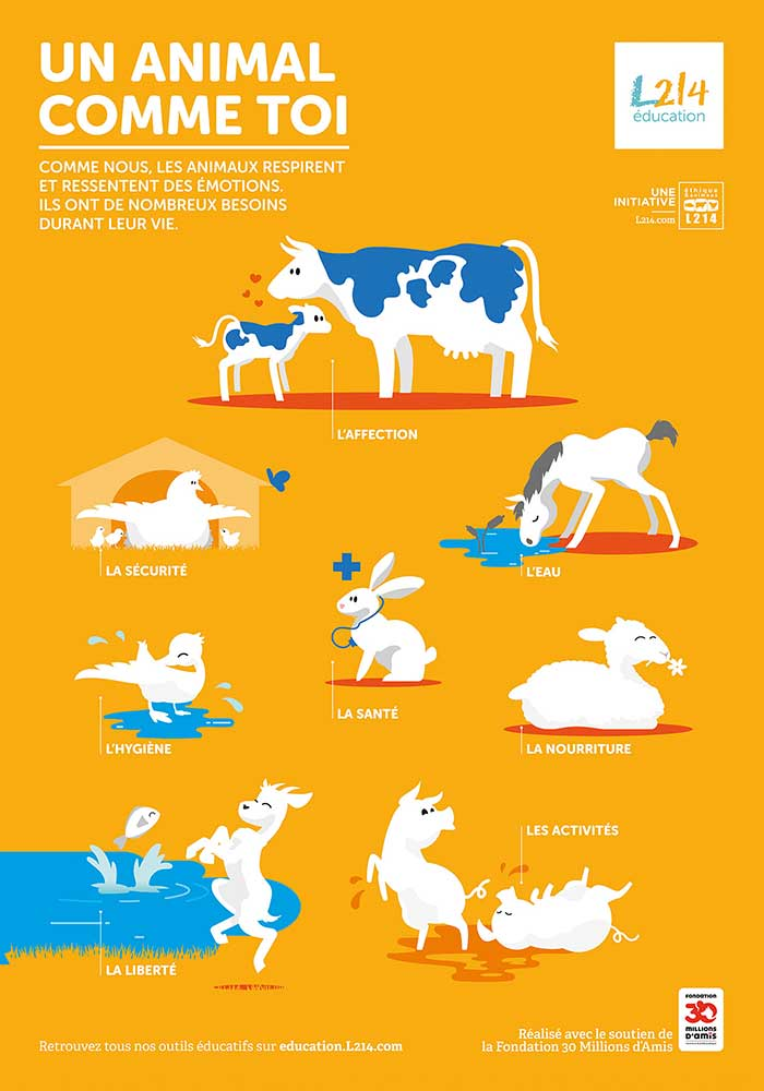 Poster Mon-journal-animal #4 / Les besoins des animaux