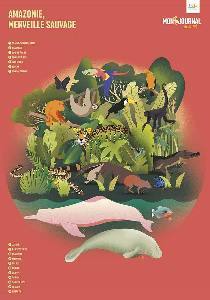 Poster Mon-journal-animal #7 / Amazonie en danger