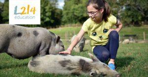 Visite du refuge GroinGroin en famille, à la découverte des animaux