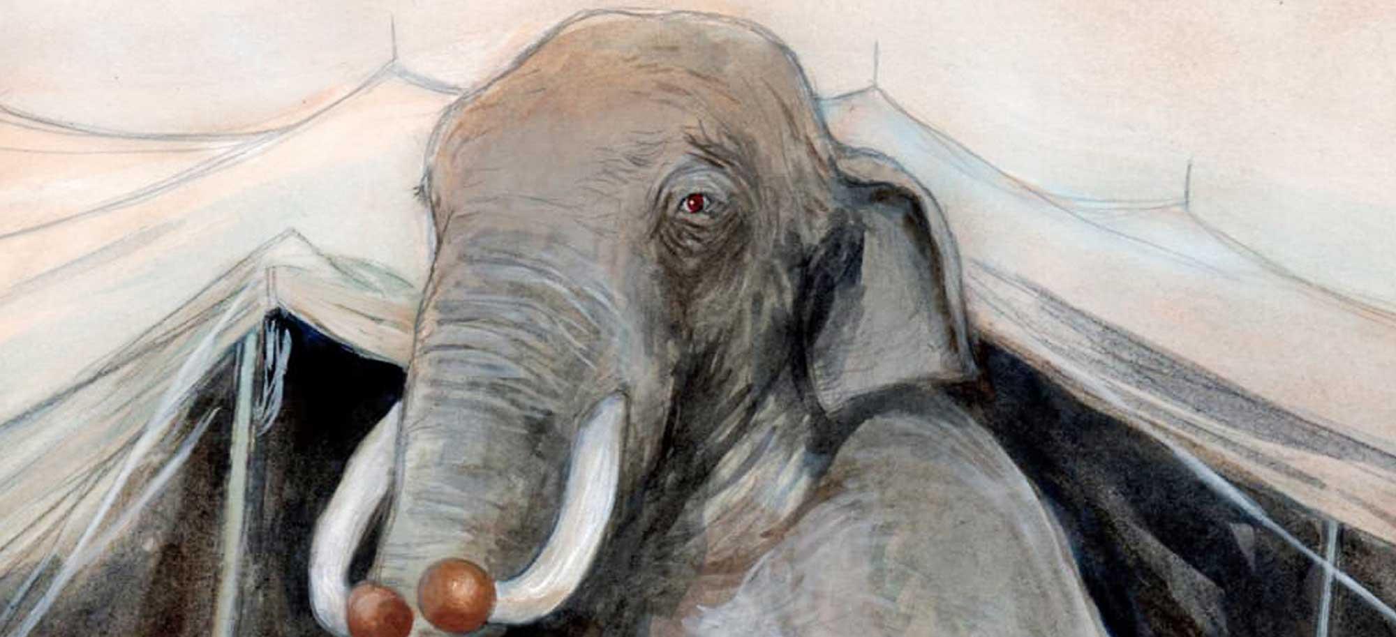 Fritz l'éléphant de cirque sorti de l'oubli par la ville de Tours